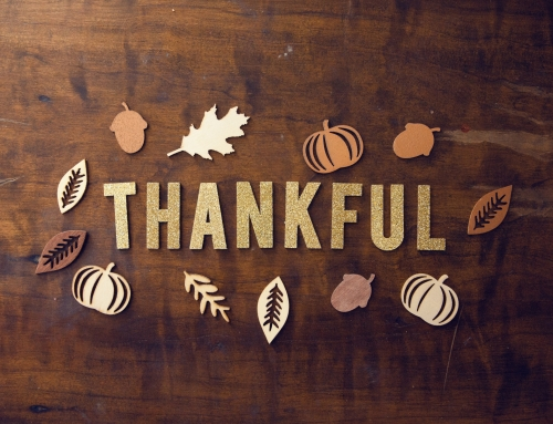[2020.11.25] Elijah Thanksgiving